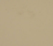 sandy-beige1